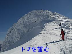 20101228t2.jpg