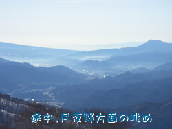 20101228t3.jpg
