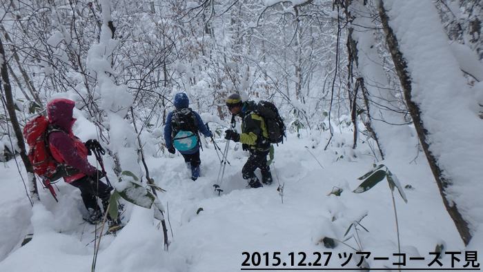 20151227 shitami1.jpg